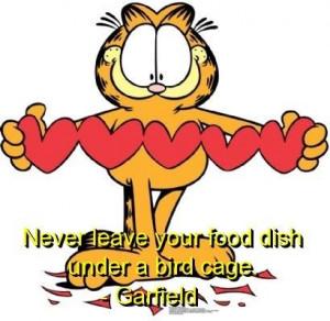 Garfield, quotes, sayings, cat, food dish, birds
