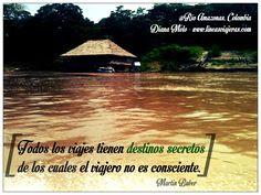 Carlo Goldoni #Travel #Quotes #Turismo #Viajes #Frases #Amazonas # ...