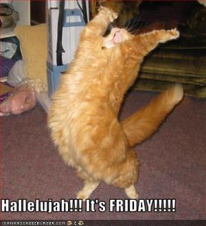 FridayLOLcat