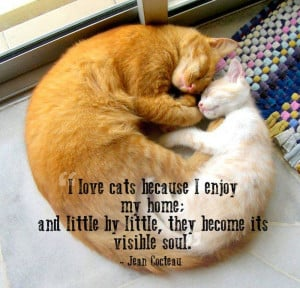 21 Great Quotes About Pets