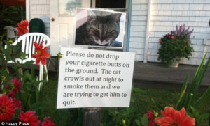 Please do not throw your cigarettes in our garden. The cat smokes ...
