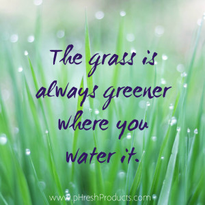 Home » Quotes » The grass is greener where you water it. Stay pHresh ...