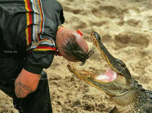 First Freestyle Alligator Wrestling Championship - PHOTOS