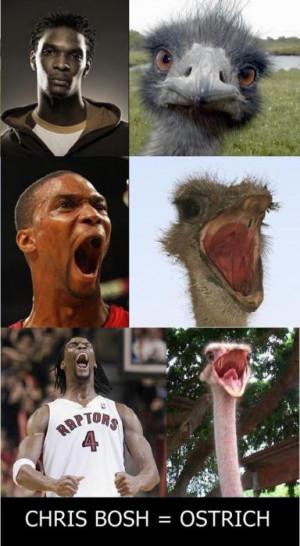 Chris Bosh ostrich