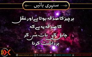 Urdu Quotes ] Har Cheez Ka Sadqa