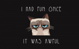 Funny Grumpy Cat Quotes HD Wallpaper #692