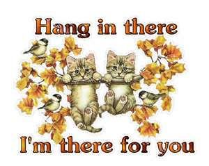 hang in there 4fd79bad1f1a044cfb5b704663e666da