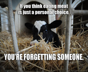 ... meal. Which one do YOU choose? #animals #vegan #govegan #animalrights