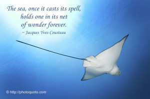 Sayings, Quotes: Jaques Yves Cousteau