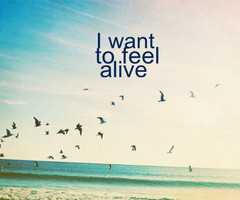 want to feel alive | Flickr - Photo Sharing!