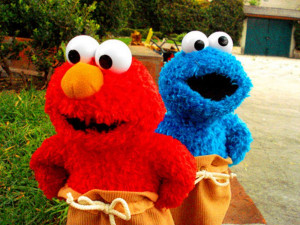 and guess what, as what i've remembered, i never treat my elmo before.
