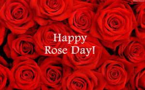 Happy Rose Day Quotes Images, Pictures, Photos, HD Wallpapers