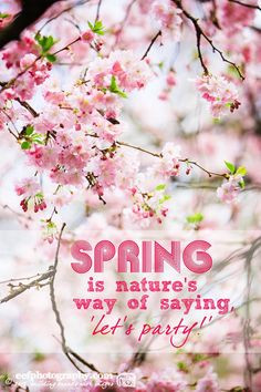 Inspiratie quote | spring is natures way of saying let's party! | www ...