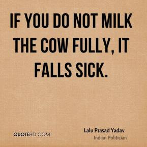 Dairy Cow Quotes