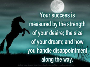... Size Of Your Dream And How You Handle Disappointment Along The Way