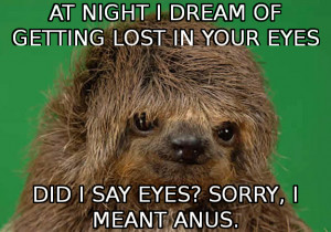 meme sloths sloth chat up sloth