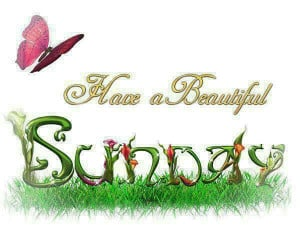 happy-sunday.jpg#happy%20sunday%20%20have%20a%20great%20week%20600x450