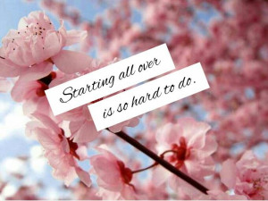 Starting over quotes. Cherry blossom.
