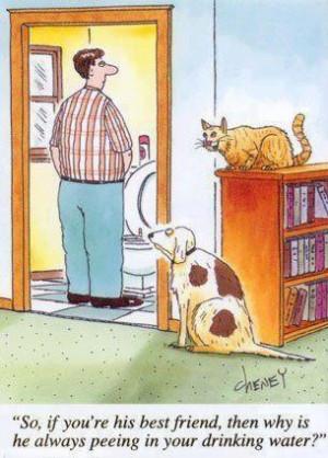 funny cartoon joke3