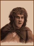 Meriadoc Brandybuck Lord Of The Rings Quotes Clinic