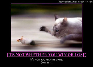 ... -you-win-or-lose-cat-mouse-chase-humor-best-demotivational-posters