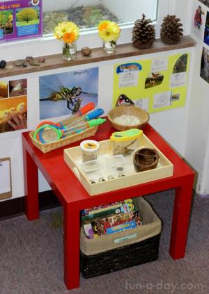 Preschool Classroom Science Center