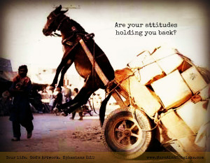 Quote - Attitudes