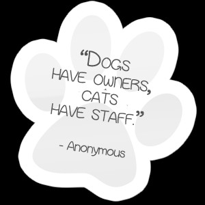 Quotes And Sayings About Pet