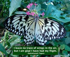inspiring quotes about death and dying more grief death hospice quotes ...