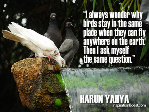 Bird Quotes Harun Yahya