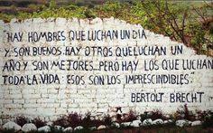 Bertolt Brecht More