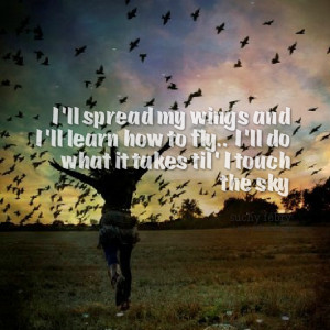 Quotes Picture: i'll spread my wings and i'll learn how to fly i'll do ...
