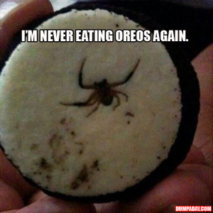 never eat another oreo again