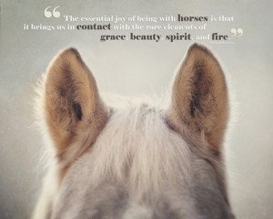Horse Quotes & Cowgirl Quotes