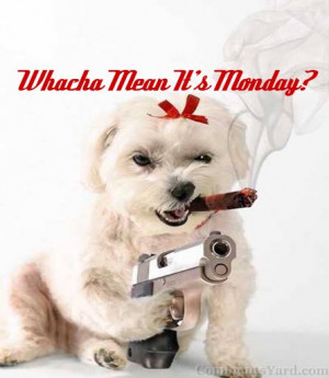 10:35 am - Good Morning! It's Monday