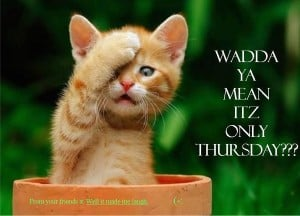 Yes Kitten it's Thursday