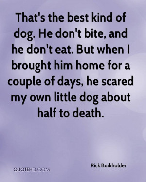 Dog Passing Away Quotes Dog about half to death.