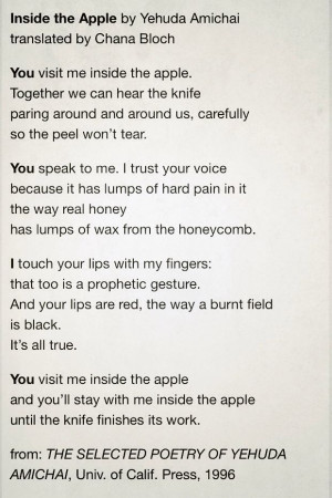 Inside the Apple by Yehuda Amichai