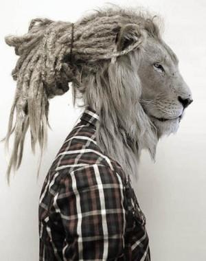 awesome, dreads, funny, hair, lion, mask, plaid, random