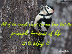 All Of The Animals Except For Man Know That The Principle Business Of ...