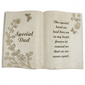 Special Dad Memorial Funeral Grave Stone Book Plaque Enlarged Preview