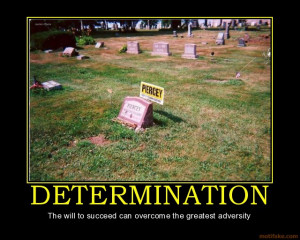 Determination The Will...