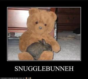 snuggle bear snuggle bunny