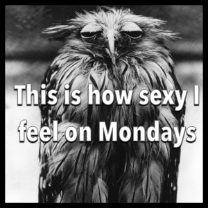 17 Funny Quotes and Jokes about Monday