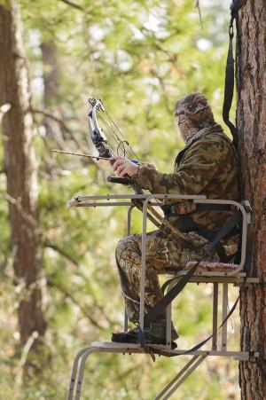 Funny Elk Hunting Jokes Two skunks observed a deer