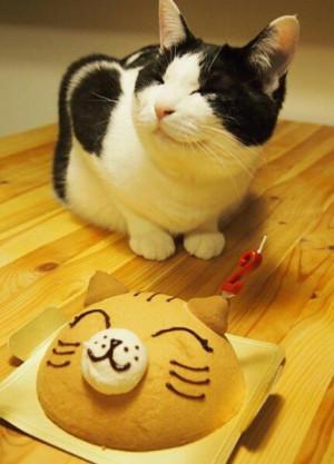 Happy-Birthday-Kitty