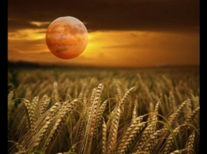 the full moon nearest the autumnal equinox is called the harvest moon ...