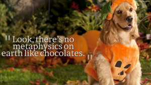 Best Halloween Quotes Images, Pictures, Photos, HD Wallpapers