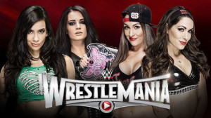 WWE AJ Lee & Paige vs Bella Twins Fastlane Predictions Match Results ...