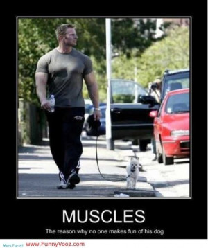 cool muscles handsome man funny sayings